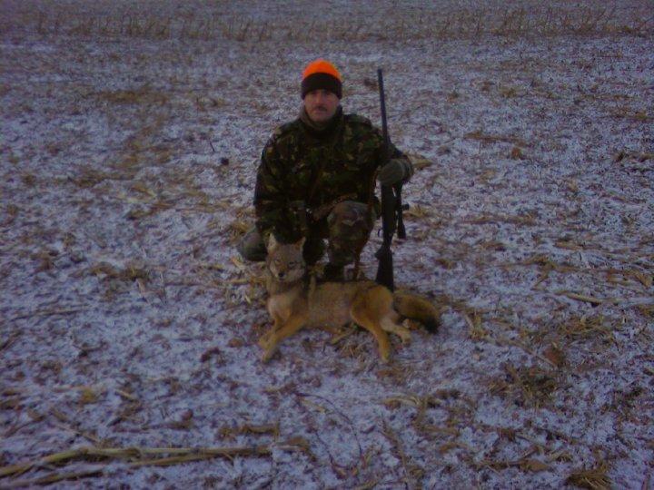 coyote 2008