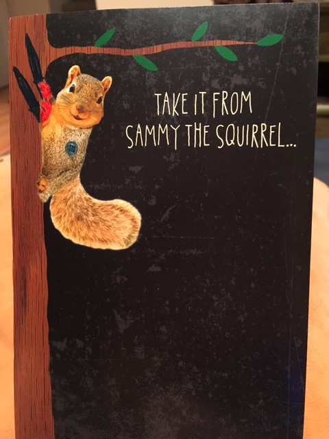 Sammy Squirrel1.JPG
