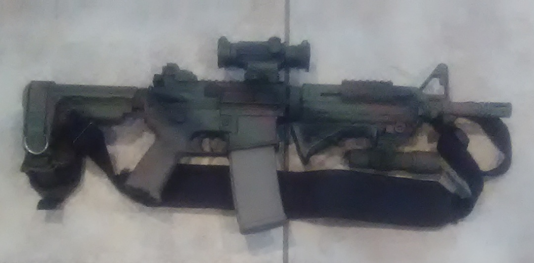 Primary Arms 1x Cyclops02